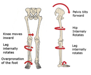FootKneeHipBiomechanics